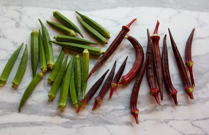 Indian okra and red okra
